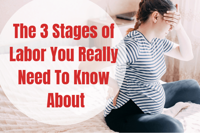 3 Stages of labor